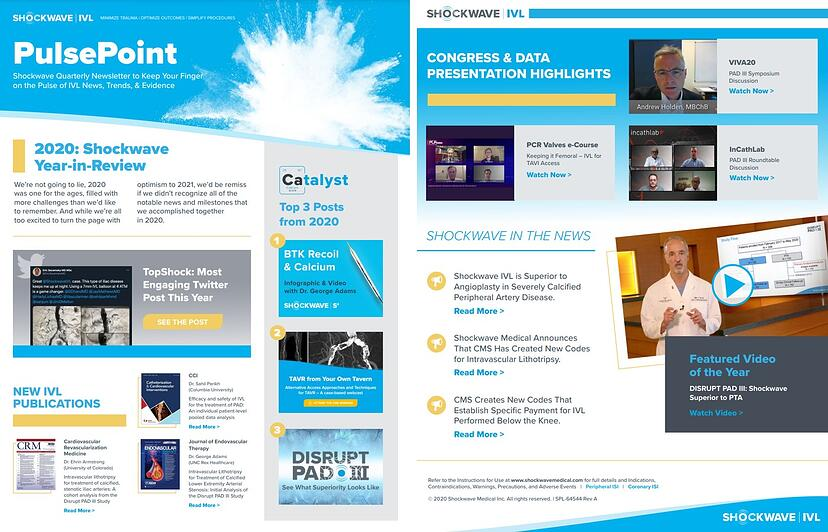 PulsePoint Peripheral 2020 Newsletter_Image for Catalyst